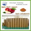 gıda sınıfı yüksek kaliteli organik elma tozu