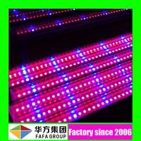 2015 Energy saving t8 led grow light tube / Solarcupid led tube light manufacturer
