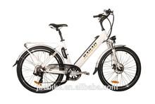 Chinese electric bikes JB-TDF15Z