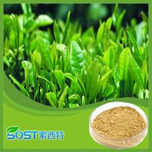 100 natural pure bulk powdered Bio green tea extract