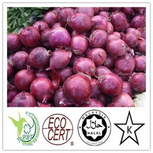 100% natural and 100% purity AD purple Onion Powder