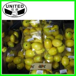 Decorative Mini Artificial Fruit/ artificial Lemon