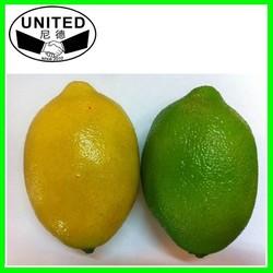 Chinese supplier wholesale artificial fruit lemon