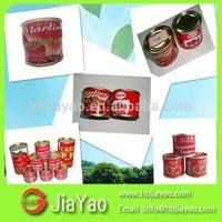 low price tomato sauce/ph of ketchup/oem tomato paste factory