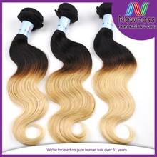 virgin all length brazilian two tone real remy e body wave human hair weaving