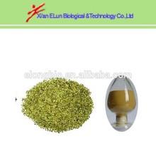 yerba mate tea bulk extract 4:1 10:1 from manufactory GMP