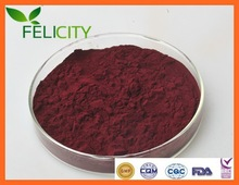 Most Professional Proanthocyanidins UV 95% Grape Seed Extract