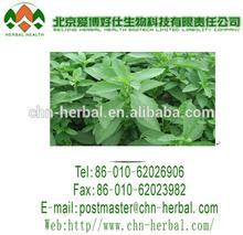 Stevia sweetener blends natural stevia food ingredient