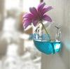 Hanging wall transparent vase transparent decorative ware different types glass vase