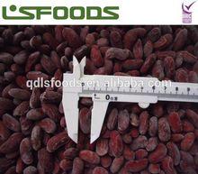 frozen IQF red kidney bean