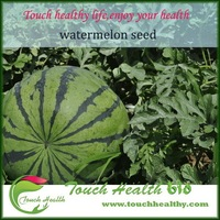 2015 Touchhealthy supply Big size green color hybrid f1 seedless watermelon seeds