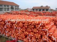 Fresh onion jam carob syrup strowberry