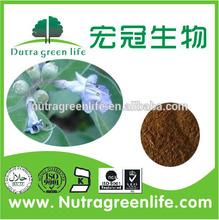 2014 natural Chasteberry Extract/Vitex Trifolia L. 5%Vitexin