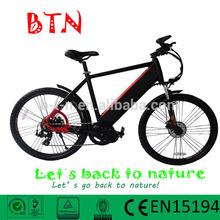 48v 750w/1000w/1200w electric bike