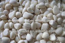 Organic IQF White Garlic Clove