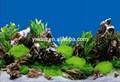 Personalizado plástico de fundo do aquário aquário Painting Pictures