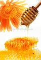 De miel en gros/gros prix du miel au canada