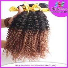 Wholesale virgin 5a kinky curl hair wet