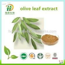 Top Quaity Olive Leaf Extract Hydroxytyrosol Powder 10% 20%