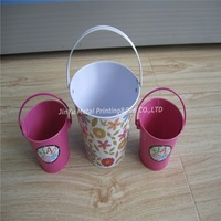 Creative small metal tin bucket, metal bucket flowerpot