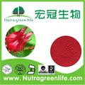 Belle Hibiscus sabdariffa extrait poudre oseille extrait pour cometic, Anthocyanidines de oseille poudre