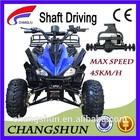 48V Adult Electric Quad Bike ATV