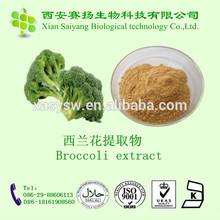 Organic Freeze Dried Broccoli Powder/Broccoli Powder/Broccoli Seed Powder