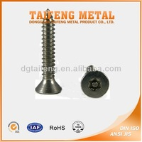 stainless steel countersunk torx security screw