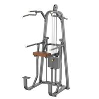 DHZ Evost E1009 Dip/chin Assist Gym Equipment