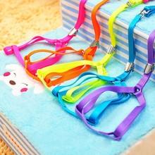 Adjustable Nylon Dog Harness Dog Leash