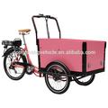 Carga usar os três- rodas de ciclomotores