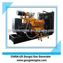 Googol Biogas/Natural Gas V12 Engine Generator