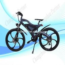 new style SGS certification e bike( PNT-TDE-05)