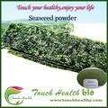 Novos produtos 2014 extrato de algas marinhas / bio fertilizantes de algas em pó