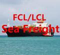 международного экспедитора морской фрахт воздушных перевозок склада китая в польше