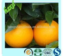 Best Selling Products Navel Orange Fruit Fresh Orange