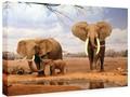 Animal selvagem elefante da pintura pintura da lona