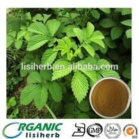 100%natural Herba Agrimoniae / Agrimonia pilosa /Agrimonia eupatoria Extract Powder