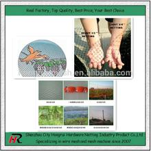 supply high quality bird mist nets from HongRui manufacturer