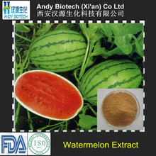 Large Stock Low Price 10:1 Watermelon Extract Powder