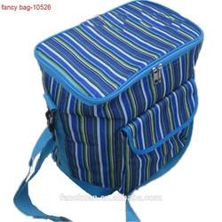 Household Printed Thermostat Bag Cooler Bag