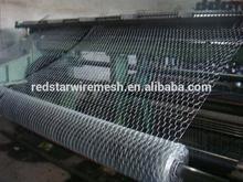 China Anping Galvanized Hexagonal Wire Mesh (Chicken,ribbt,animal Mesh)