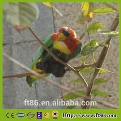 lifelike birds feather birds figurine canary birds