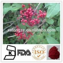 natural Elderberry Extract Powder Anthocyanidins 10:1/ raw material elderberry extract