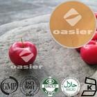 100% Natural Acerola Cherry Extract Powder 25%VC Anti-oxidant