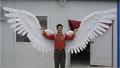Upward white large feather angel wings