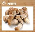 китайский замороженные гриб боровик целом