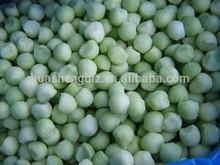 frozen green hami melon