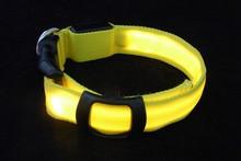 GROUPON LED Pet Cat Dog LED Collar Safety Glow Luminous Flashing Lighting Up Necklace!!
