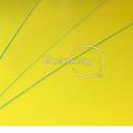 Hoja de plástico corrugado/hoja de pp corrugado/cartonplast/pp capa esterasdecoches